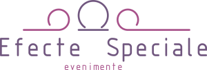 www.efectespeciale-nunta.ro Logo